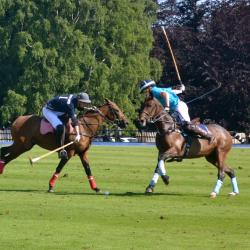 Read more at: POLO - Varsity 2013 Match Report